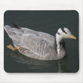 Bar-headed Goose Mouse Pad