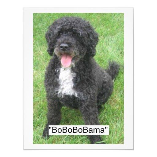 Barack Obama Portuguese Water Dog Invitations