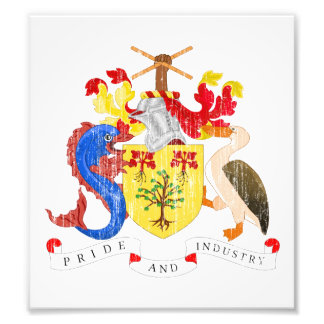 Barbados Coat Of Arms Photo Art