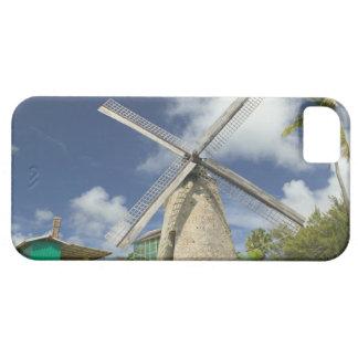 BARBADOS, North East Coast, Morgan Lewis: Morgan iPhone 5 Cases