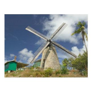BARBADOS, North East Coast, Morgan Lewis: Morgan Postcard