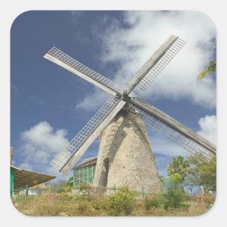BARBADOS, North East Coast, Morgan Lewis: Morgan Square Sticker