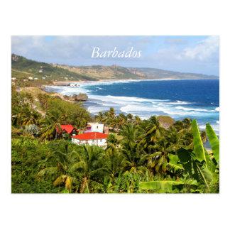 Barbados Postcard, Ocean, tropical trees Postcard