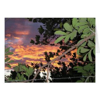 Barbed Wire El Salvadoran Sunset Greeting Card
