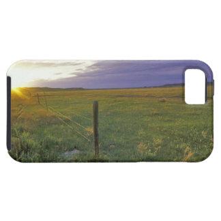 Barbed Wire Fenceline in northeastern Montana iPhone 5 Case