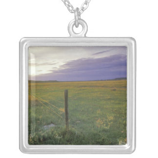 Barbed Wire Fenceline in northeastern Montana Square Pendant Necklace