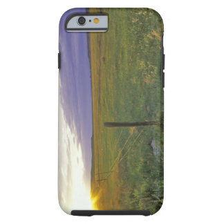 Barbed Wire Fenceline in northeastern Montana Tough iPhone 6 Case