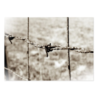 Barbed Wire Fencing (Sepia) Business Card