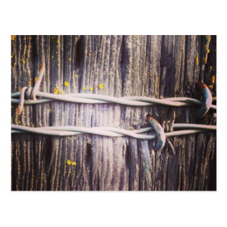 Barbed Wire & Oak Texture Postcard