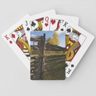 Barbed Wire Poker Cards