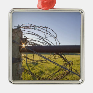 Barbed wire rolled up on fencerow near Silver-Colored square decoration