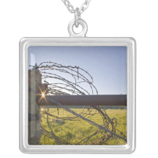 Barbed wire rolled up on fencerow near square pendant necklace