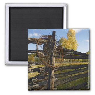 Barbed Wire Square Magnet