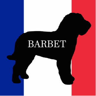barbet name silo France flag Photo Sculpture Key Ring