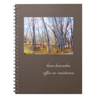 Bare Branches, No Resistance Journal
