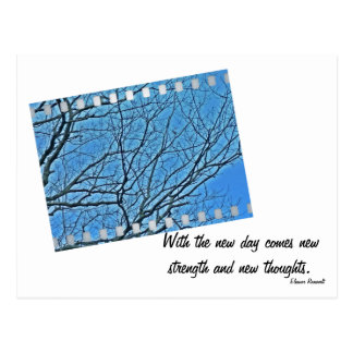 Bare Branches - Roosevelt Quote Postcard