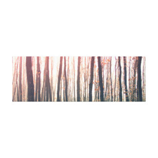 Bare forest canvas print