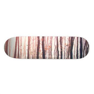 Bare forest skateboard deck