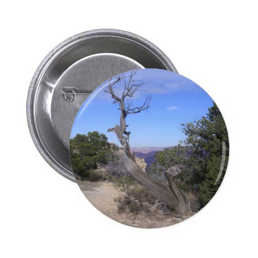 Bare Tree Grand Canyon Buttons