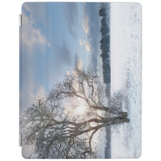 Bare tree in a snow field with early sunrise iPad cover