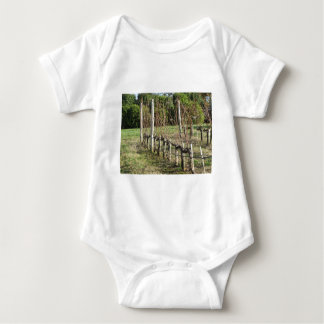 Bare vineyard field in winter . Tuscany, Italy Baby Bodysuit