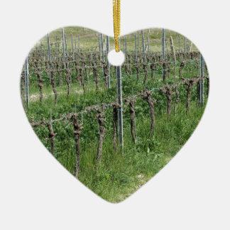 Bare vineyard field in winter . Tuscany, Italy Ceramic Ornament