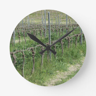 Bare vineyard field in winter . Tuscany, Italy Round Clock