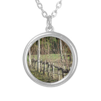 Bare vineyard field in winter . Tuscany, Italy Silver Plated Necklace