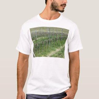 Bare vineyard field in winter . Tuscany, Italy T-Shirt