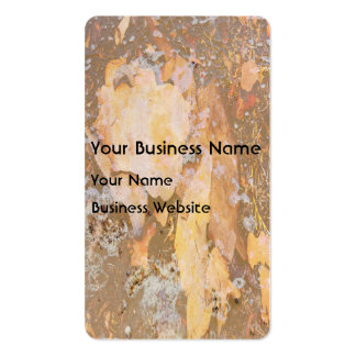 Bark in water close up texture business card templates