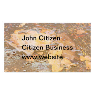 Bark in water close up texture business card template