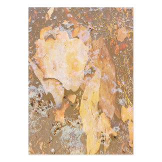Bark in water close up texture business card