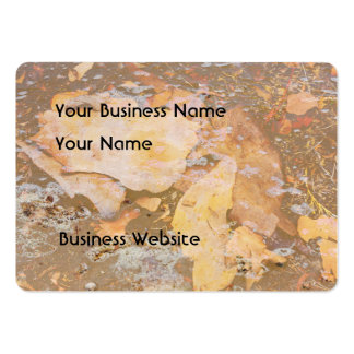 Bark in water close up texture pack of chubby business cards