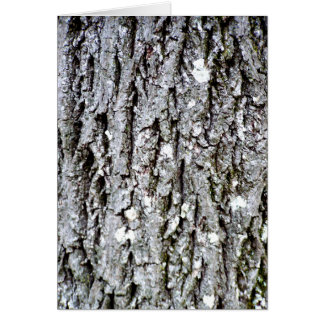 Bark Of A Hickory Tree Card