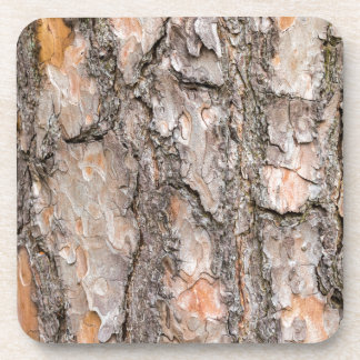 Bark of Scotch pine tree as background Coasters