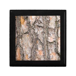 Bark of Scotch pine tree as background Gift Box
