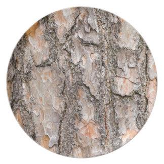 Bark of Scotch pine tree as background Plate