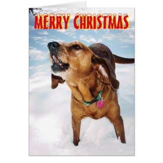 Barking dog in the snow Christmas Card