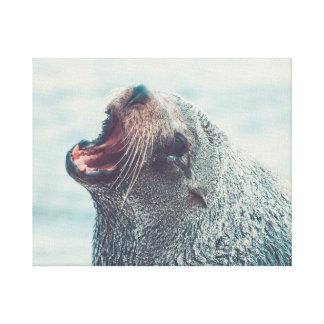 Barking Seal Canvas Print