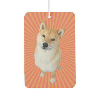 Barkley Brand Rectangle Air Freshener