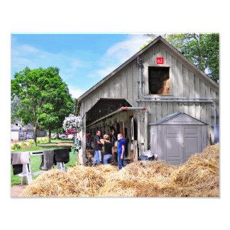 Barn 62 at Horse Haven - Saratoga Photographic Print