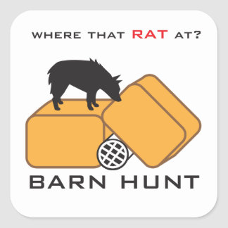 Barn Hunt Schipperke Square Sticker