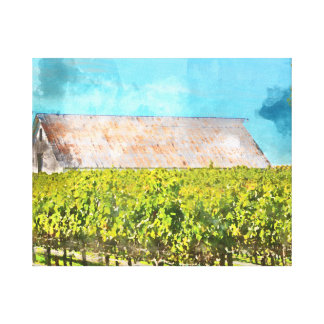 Barn in a Vineyard in Napa Valley California Canvas Print