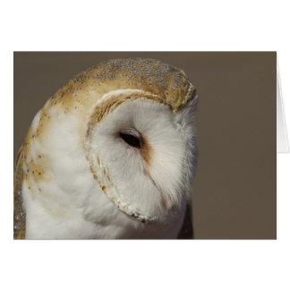 Barn Owl 2 Greeting Card