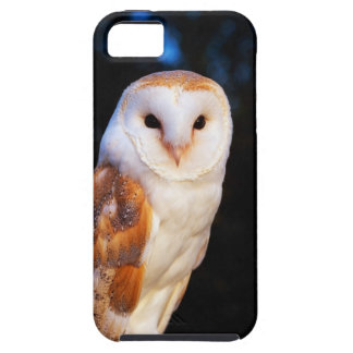 Barn Owl 2 iPhone 5 Cover