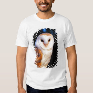 Barn Owl 2 Tee Shirts