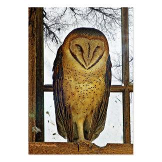 Barn owl business card template
