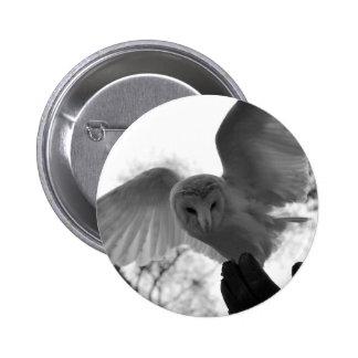 Barn Owl Buttons