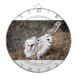 Barn Owl Chicks In A Nest Dart Board