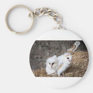 Barn Owl Chicks In A Nest Key Ring